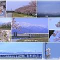 北陸新幹線と立山連峰