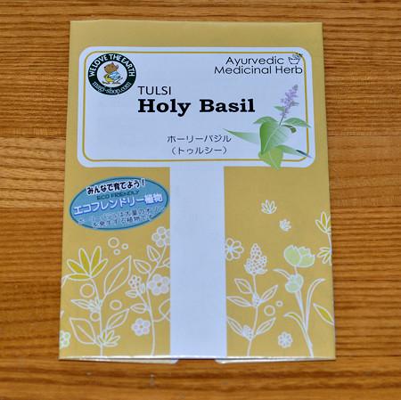 Holy Basil 種