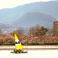 写真: 甲山