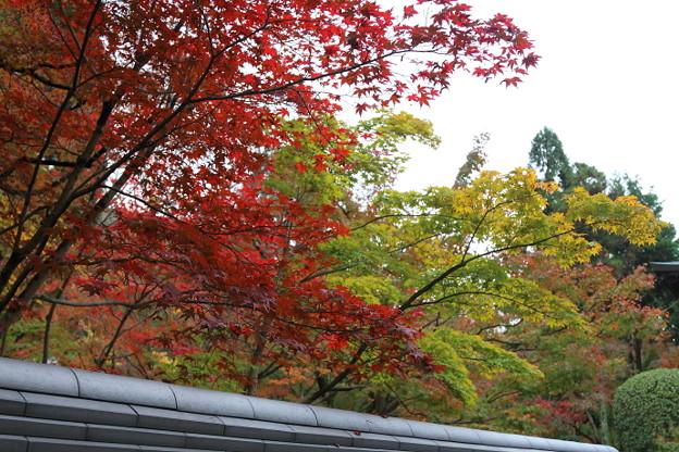 曇りの南禅寺を外から