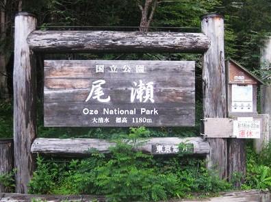 5.12 大清水 標高1180m