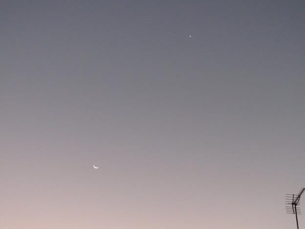 Photos: 月と金星。