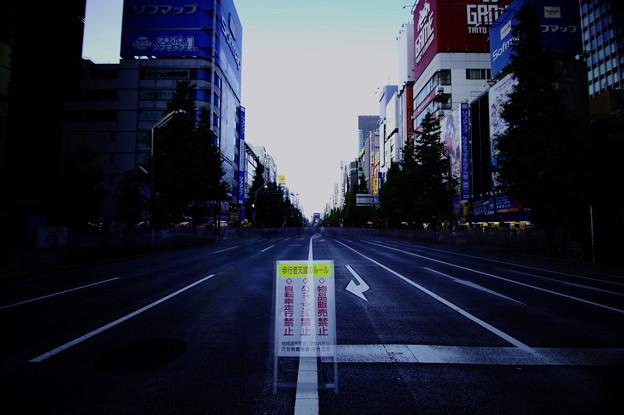 写真: Steins;Gate (シュタインズ・ゲート)