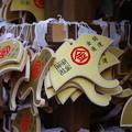Photos: 御金神社 絵馬