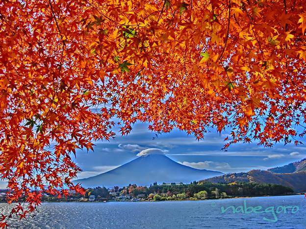河口湖の秋-3