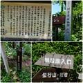 Photos: 白馬散策`14(観音原)-1