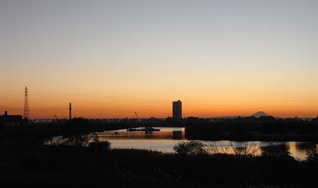 ツリーと富士の江戸川
