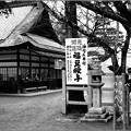 Photos: 鬼はー♪