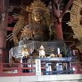 Photos: 東大寺13