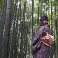 Photos: 竹取物語 2015