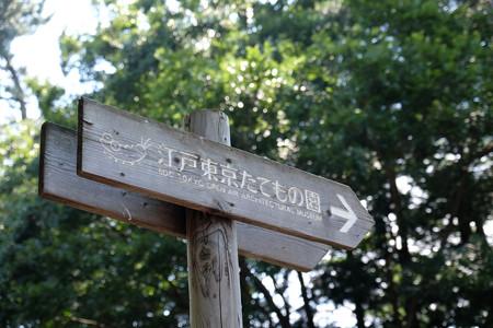 01たてもの園へ