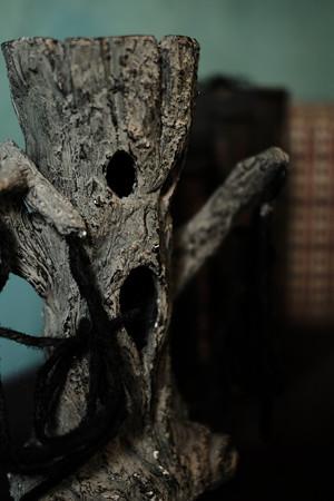 16木のお化け-2656