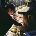 聖天山_-稲荷祠_Rollei35_lomography100-010026