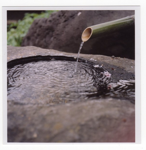 写真: 水盤