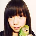 Photos: 白鳥来夢