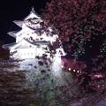 ライトアップされる青森弘前城の夜・・20140501