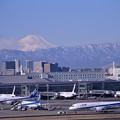 Photos: 綺麗な冬晴れの日 行き交う国際線ターミナル・・20150131