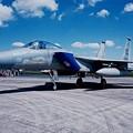 Photos: 嘉手納のF-15Cイーグル。。44飛行隊