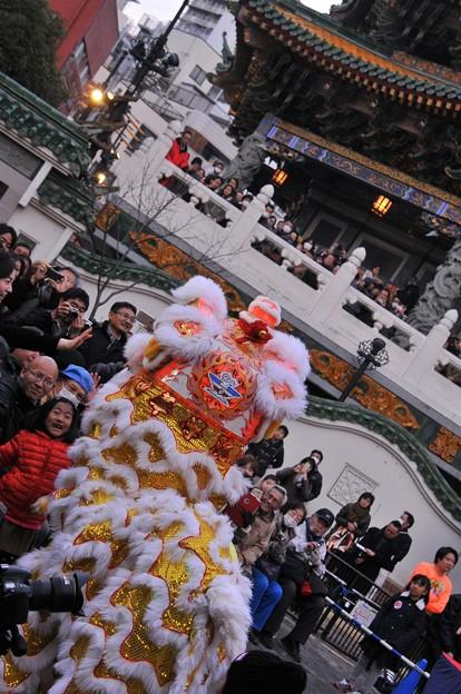 幸せの使い・・中国獅子舞・・20150221
