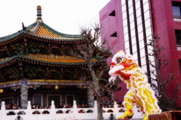 媽祖廟と中国獅子舞・・20150221