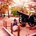 Photos: 昔の歴史も感じながら紅葉散策。。小倉城周辺20151121