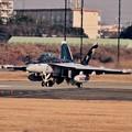 写真: 撮って出し。。本日から訓練再開厚木基地。。アウトローのEA-18Gグラウラー。。1月15日