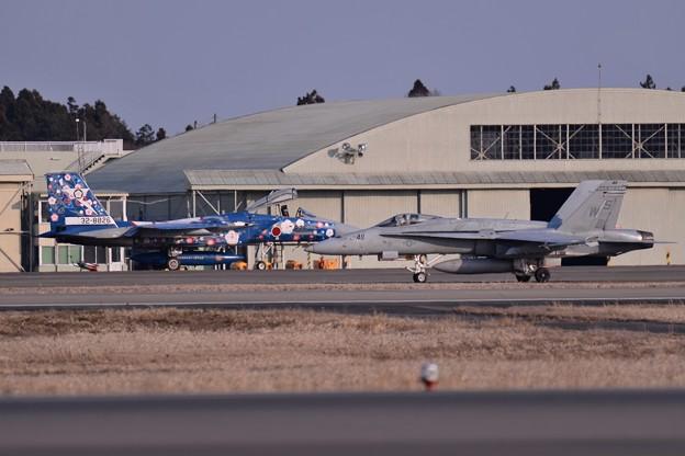 百里基地 第305飛行隊F-15スペマ機と米海兵隊 VMFA-323Death Rattlers F/A-18C  20150313