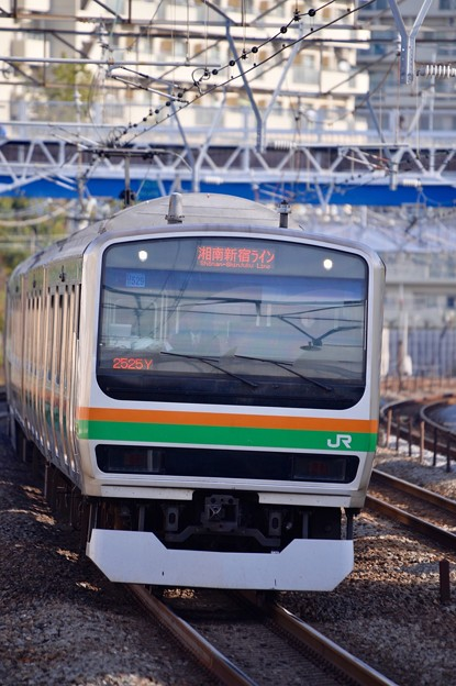 たまには撮り鉄に。。笑(^^) 湘南新宿ラインE233系  20151129