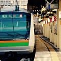 Photos: 横須賀線保土ヶ谷駅を通過。。湘南新宿ラインE233系。。20151129