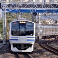 Photos: 保土ヶ谷駅に入って来た横須賀線E217系。。20151129