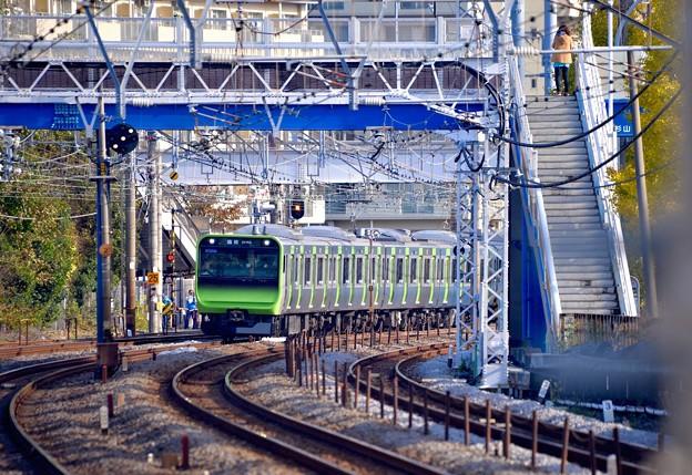 Photos: 目的の奴が来た。。横須賀線保土ヶ谷駅 山手線の新型車両。。20151129