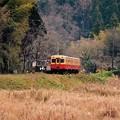秋終わり冬へのローカル線風景。。小湊鉄道キハ200 20151220