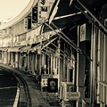 密集している飲み屋街。。横浜野毛町 都橋商店街 20160207