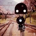 鉄道の信号。。山北駅のホーム。。20160402