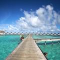 Photos: Paradise