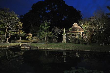 奈良公園2011秋-09