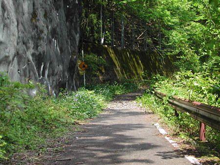 R306佐目トンネル旧道? おにぎりの痕跡