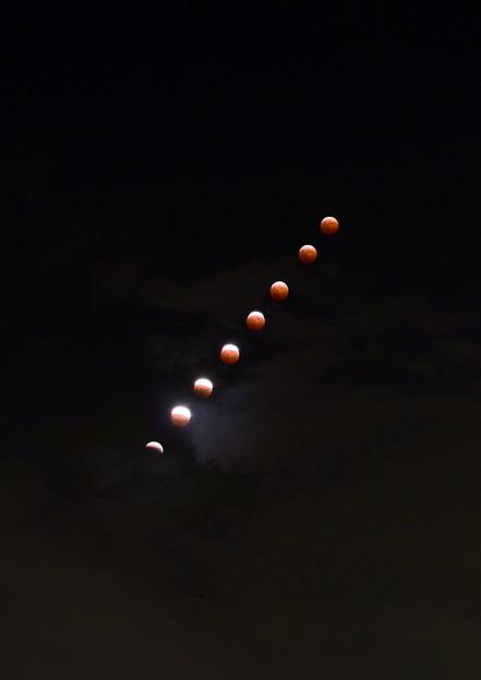 Photos: 10月8日 皆既月食