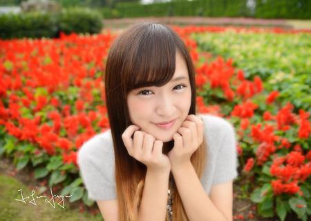 SAKURA花壇横アップ2L