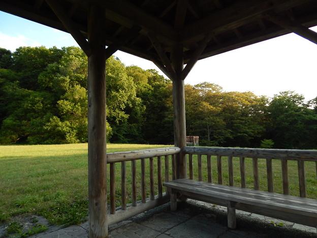 野幌森林公園2014