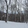 Photos: 冬3