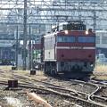 Photos: EF81‐729牽引 2093レ vol.2