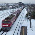 Photos: 蔵出し~雪景色&奥羽本線下り貨物