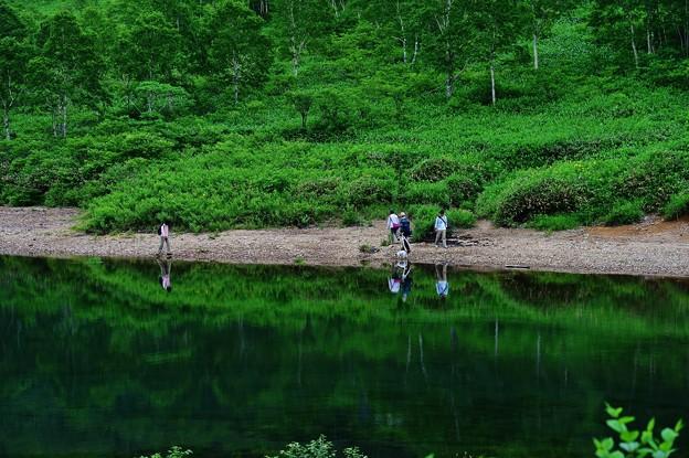 野反湖 ノゾリキスゲの咲くころ(16)