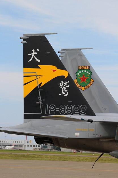 小松基地航空祭 45 第306飛行隊 記念塗装機