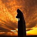 写真: 希望という名の光