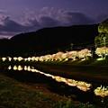夜桜~朧月夜