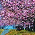 光のどけき春の日に・・・?