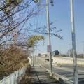 写真: 【1月4日は鷲宮神社へ!その1】川口市