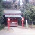 【1月4日は鷲宮神社へ!その16】順路の途中…